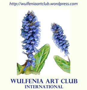 wulfenia-art-club-international-web